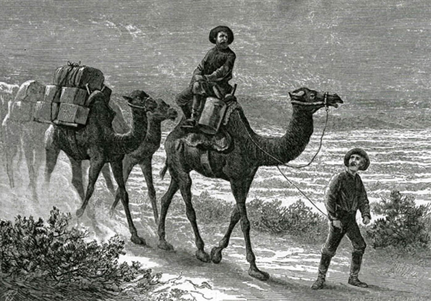 Illustration from Harper's Magazine of the camel corps trekking west to Los Angeles in 1857