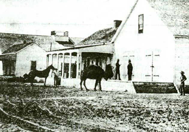 Taken at Camp Drump near Wilmington, this is the only known photograph of an Army camel